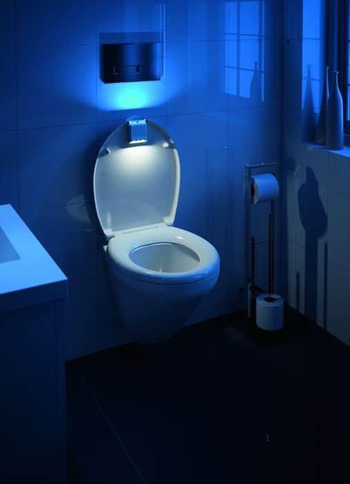 Décoration : WC esprit design