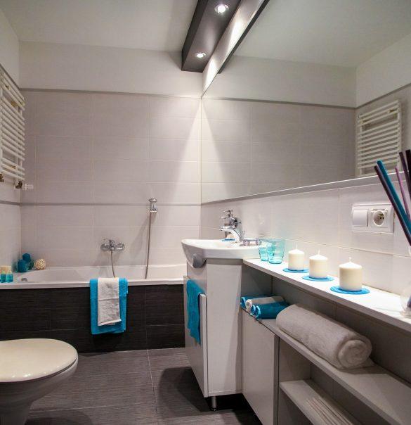 Décoration : WC moderne